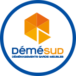 logo demesud service